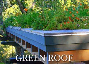 greenroof